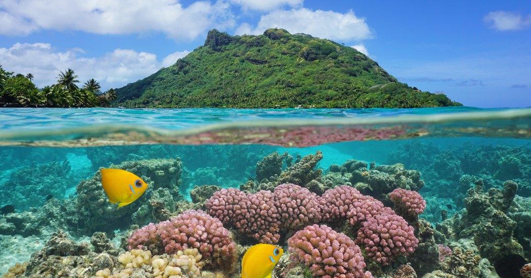 Sea in Tahiti