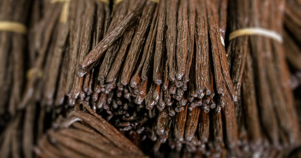 Cinammon sticks in barells in St Barts
