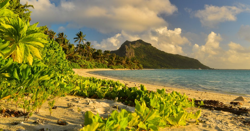 Below Deck season 6 filmed in Tahiti   photo 2