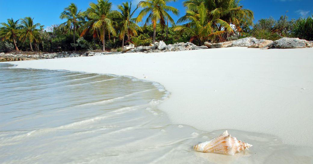 Bumper Caribbean yacht charter season predicted as Coronavirus travel restrictions relax photo 13