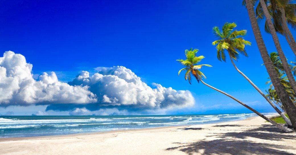 Beach in Bahamas