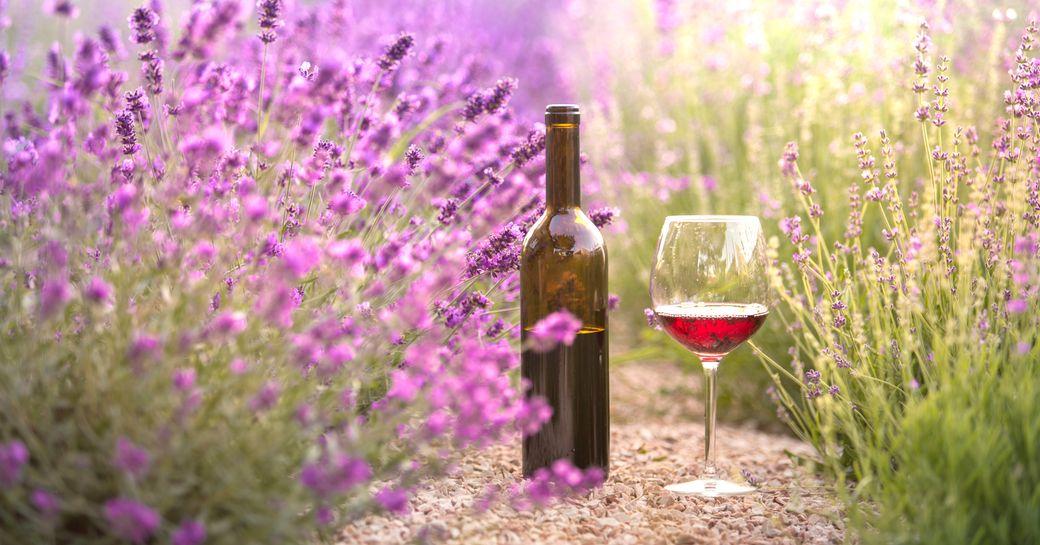 Bottle of wine in lavender field