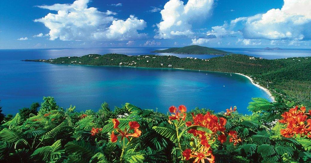 Flowers St Thomas US Virgin Islands