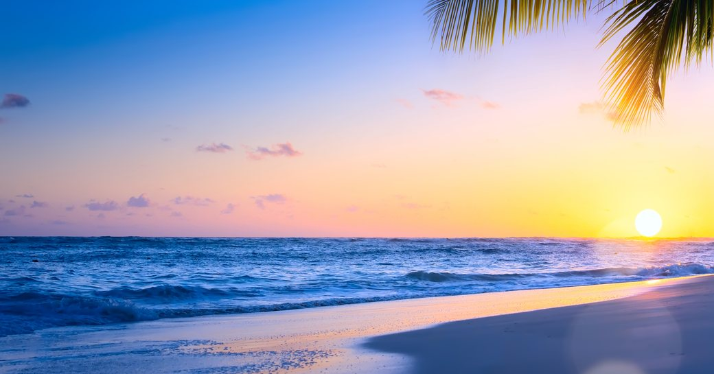 Caribbean beach with sea washing against shore and palm tree in corner of image and sun setting on horizon