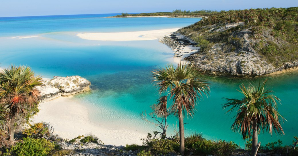 shroud cay in the exumas, beautiful spot in the bahamas with sandy beaches and blue sea and palm trees