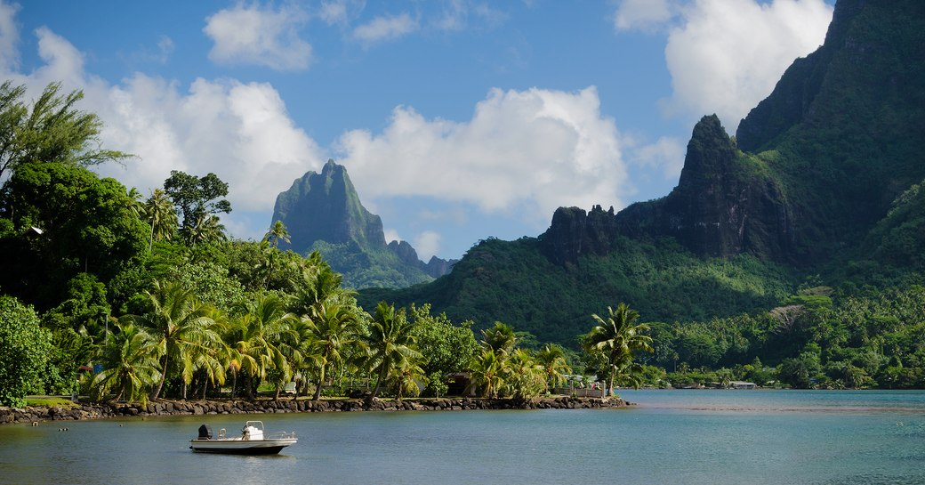 Boat in Cooks Bay with Moua Puta mountain in the background in a green jungle landscape on the tropical island of Moorea,