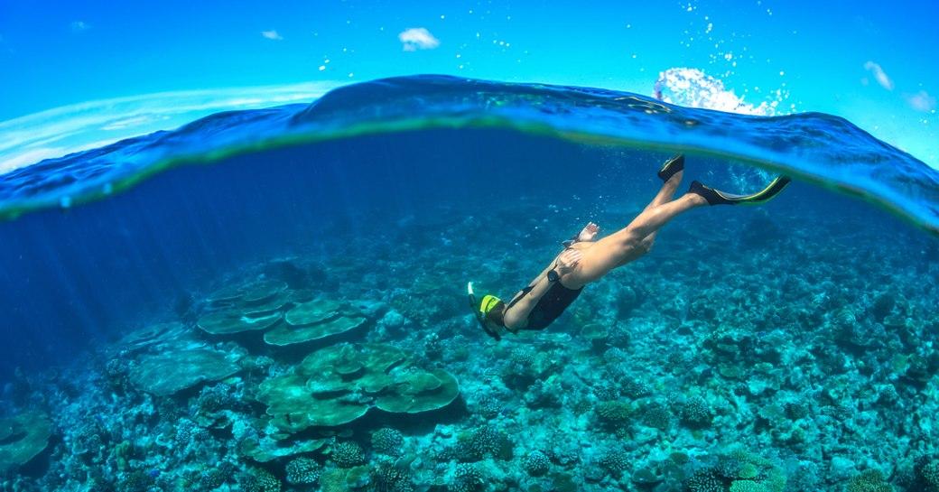 Seychelles diving into sea
