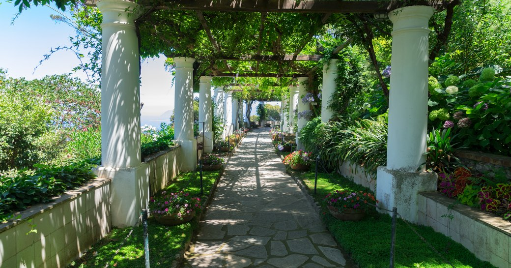 Flowers and plants in the gardens of Villa San Michele on the island of Capri