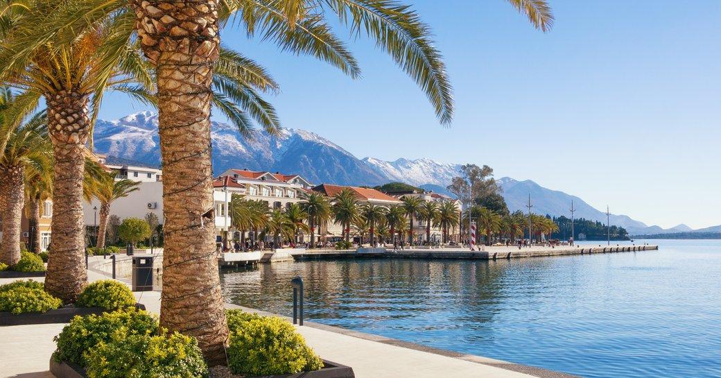 Porto Montenegro implements innovative new reception strategies amid Coronavirus pandemic photo 1