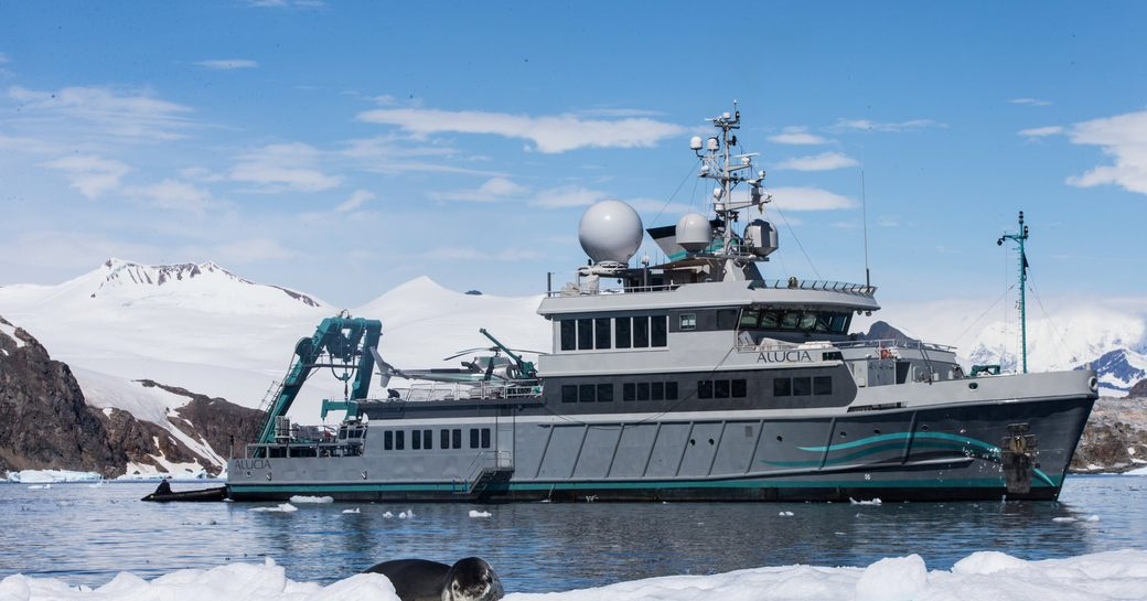 Expedition yacht ALUCIA photographed from her profile with a seal and snow in the foreground