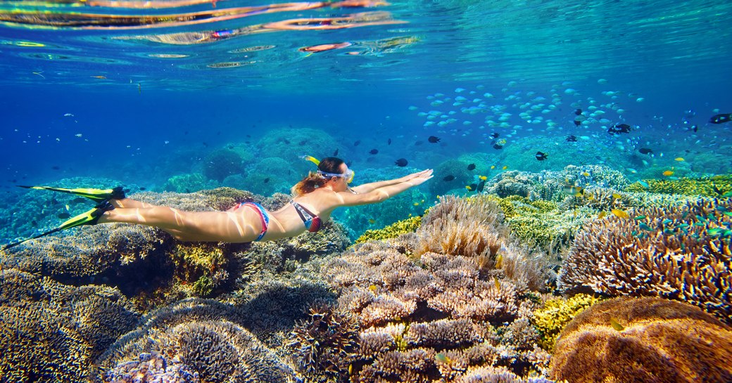 woman snorkels above great barrier reef while on a whitsundays yacht charter vacation