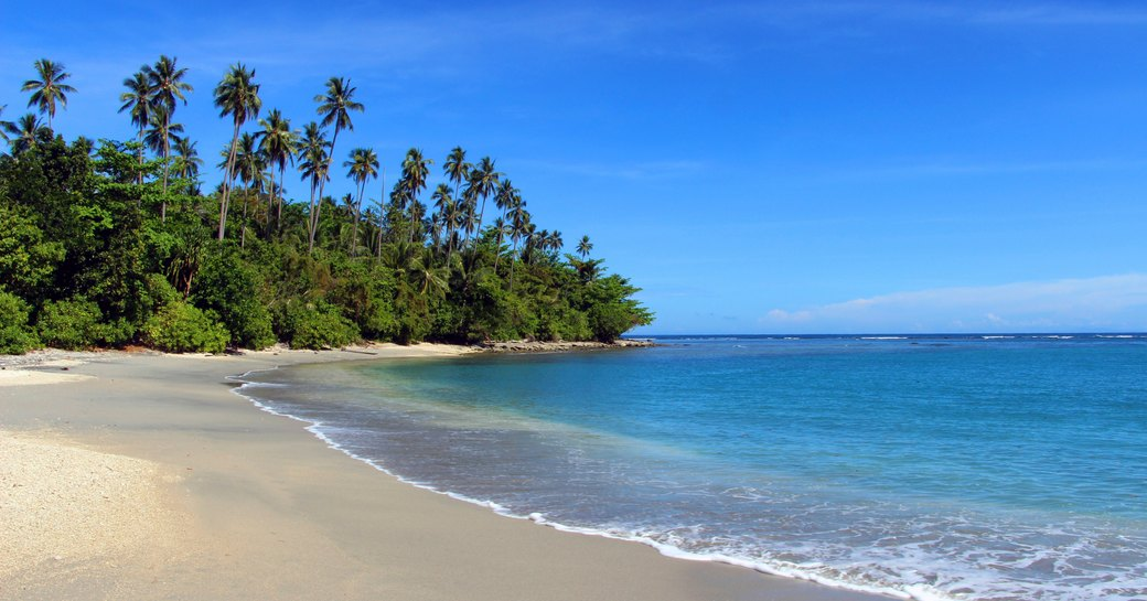 Sandy beach in the Solomon Islands, with palm trees in background