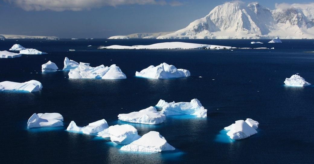 ice bergs in the ocean in antarctica