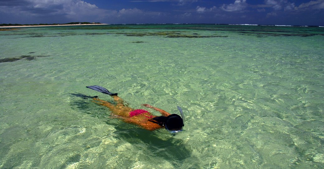 charterer snorkels in the crystal clear waters of Anegada in the British Virgin Islands