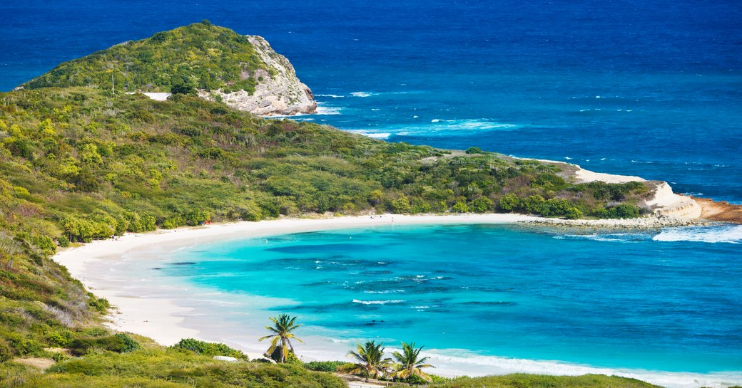 Aerial shot of little bay and green forests in Antigua