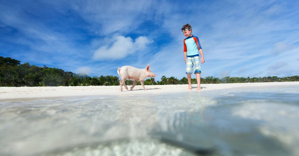 Pig beach in the Bahamas, charter guest stands on sandy beach