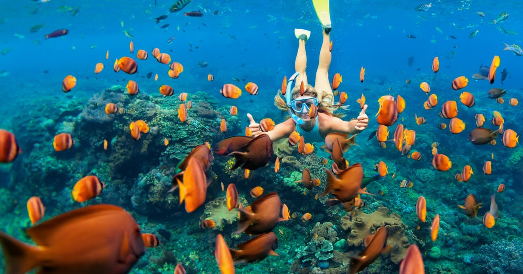 Women diving among fish in Maldives