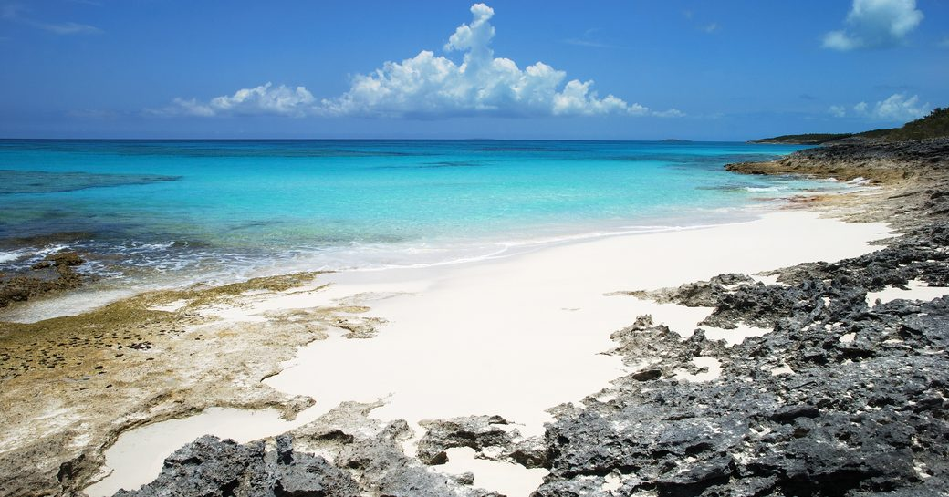 caribbean white sandy beach with bright blue sea