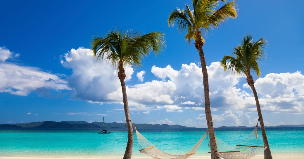 two hammocks between palm trees at White Bay, Jost van Dyke, British Virgin Islands
