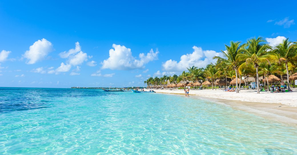 Clear water, lapping up to sandy beach with palm trees