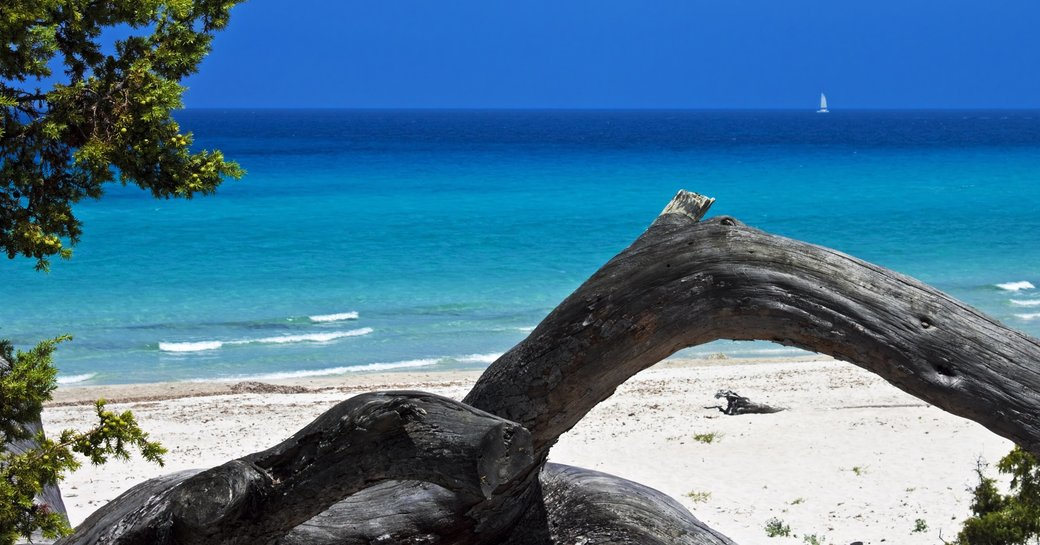white sand beach along the Desert des Agriates in Corsica