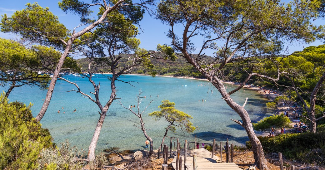 Porquerolles: The most enchanting island in the South of France photo 3