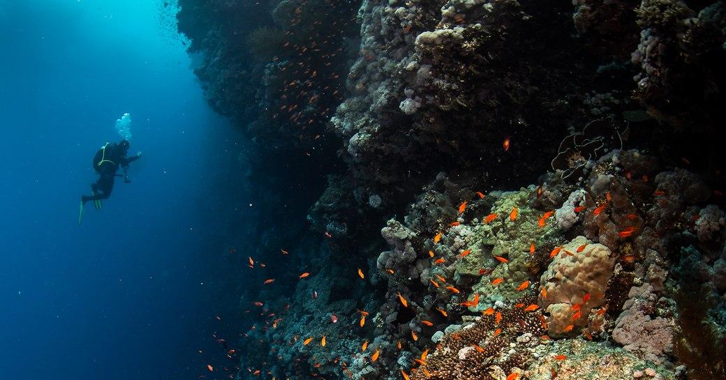 Blue hole diving spot