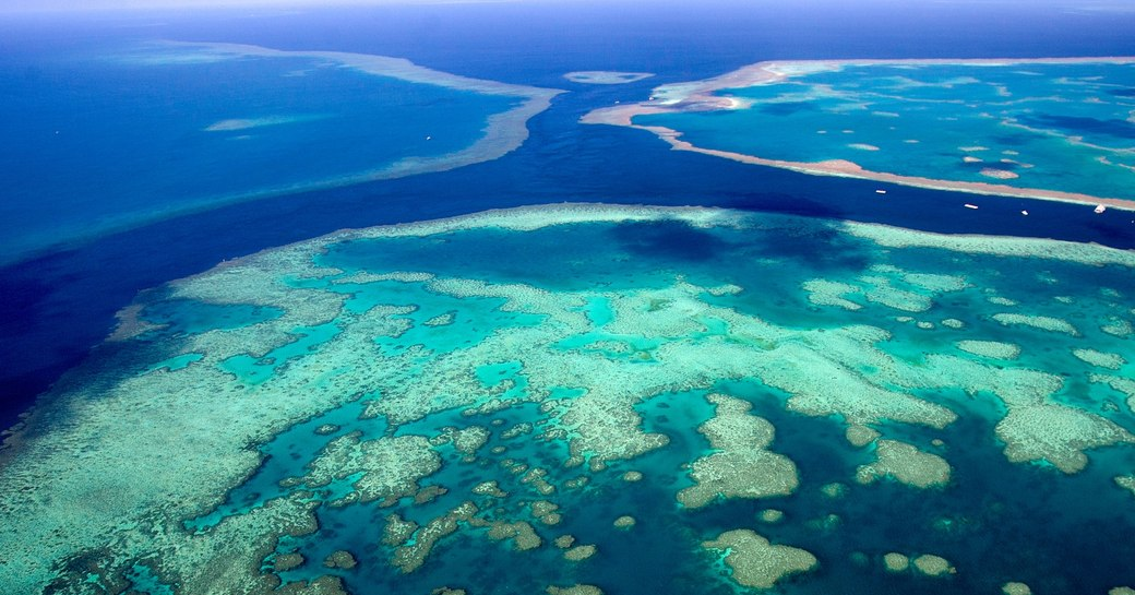Why You Have To Book A Great Barrier Reef Yacht Charter Right Away photo 7
