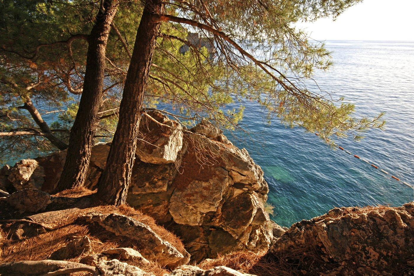 Cruise the Adriatic to the Montenegrin Coast, near Budva