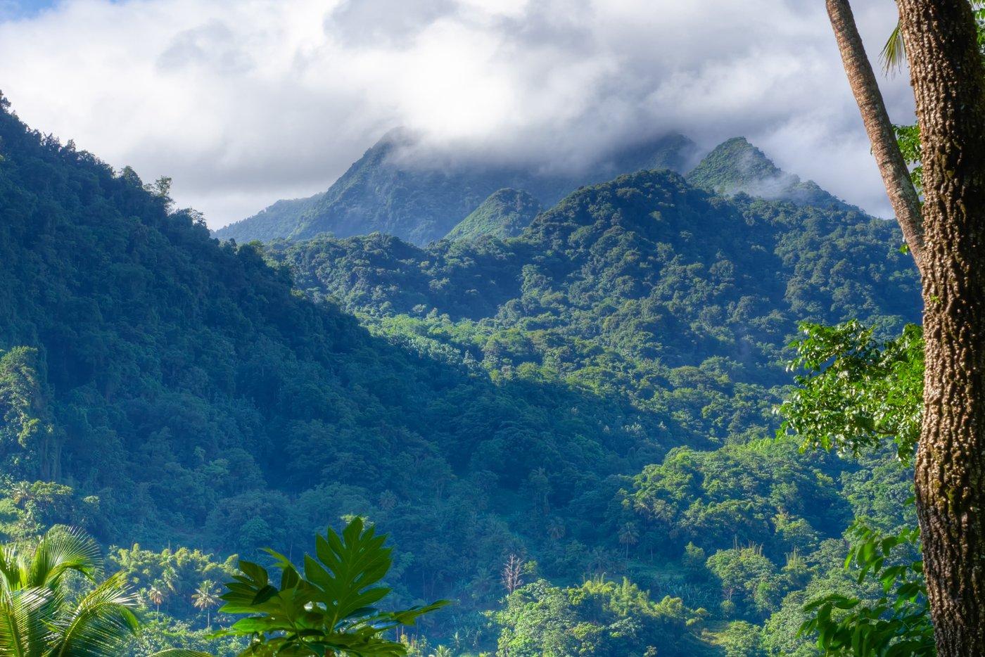 Photo Tour of St. Lucia 10