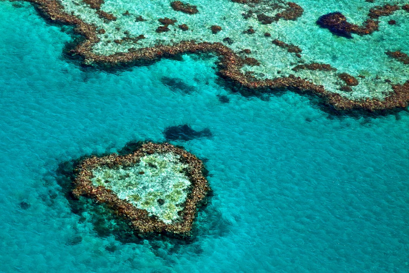 Photo Tour of Great Barrier Reef 3
