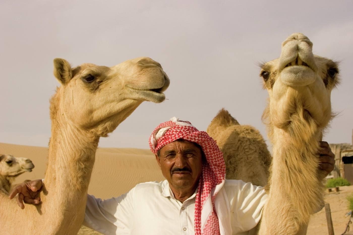 Photo Tour of Arabian Gulf 4