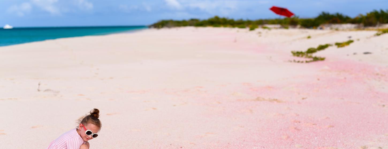 Pink Sand Beach Image 6
