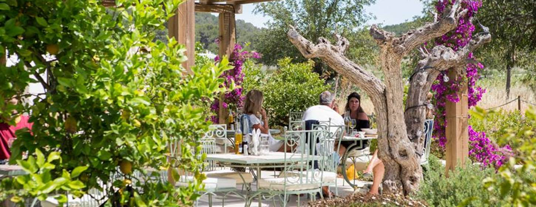 Aubergine Ibiza Image 3