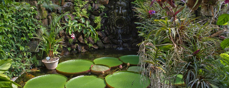 Negombo Thermal Gardens Image 3