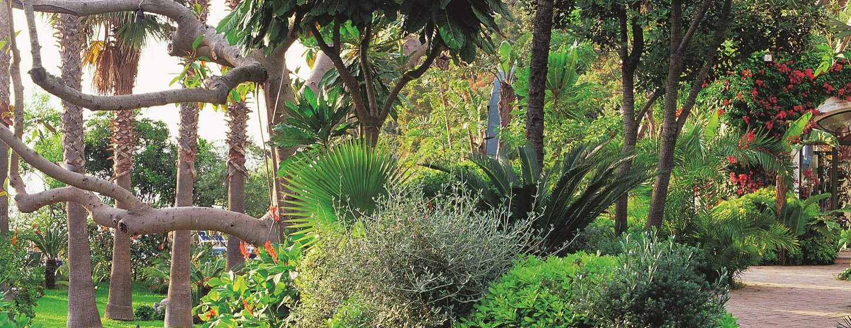 Negombo Thermal Gardens Image 6