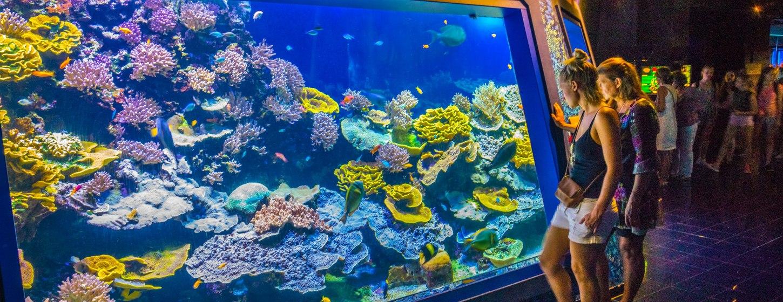 Oceanographic Museum of Monaco Image 3