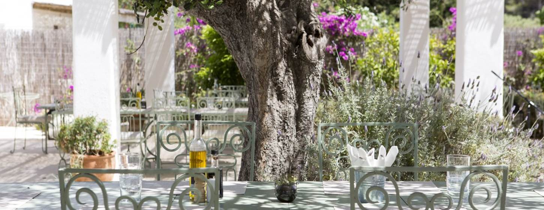 Aubergine Ibiza Image 1