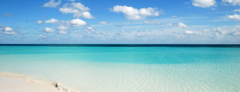 Tiger Beach Image 4