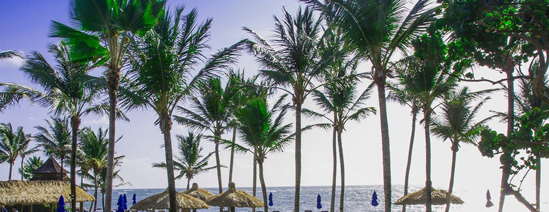 Coconut Bay Beach Resort & Spa Image 5