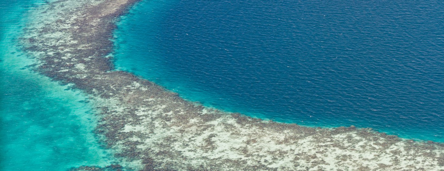 The Great Blue Hole Image 6