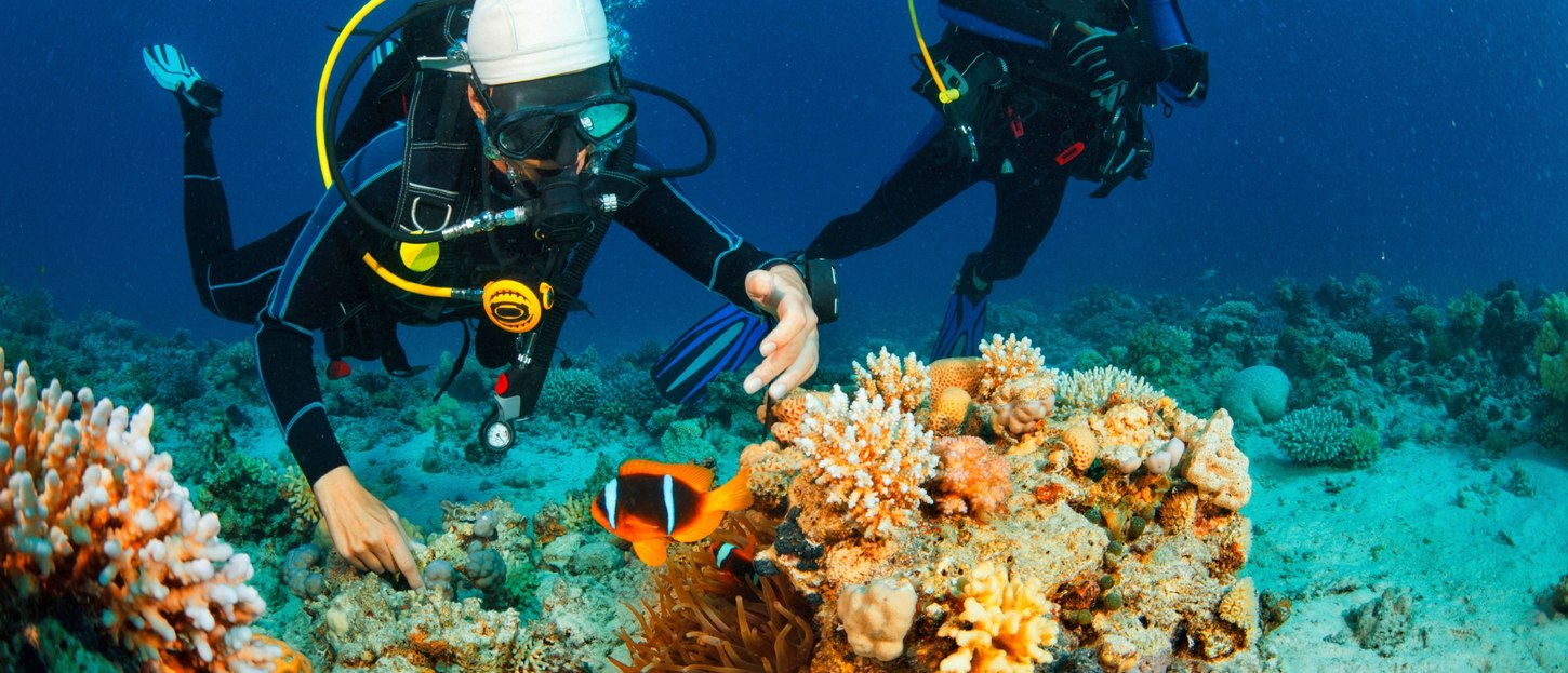 The Superyacht Guide: How to get PADI-certified on your Luxury Yacht Charter