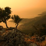 <p> Visit the breath taking set of Nikolas Cage&rsquo;s &lsquo;Captain Corelli&rsquo;s Mondolin&rsquo; with a stop off on the beautifully rugged island of Kefalonia. Possibly best known for its superb beaches, it provides the perfect backdrop to an al fresco dinner on the deck of your luxury charter yacht.</p>