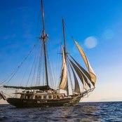 Arktos photo 5