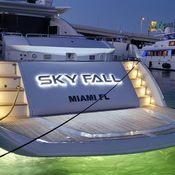 Sky Fall photo 4