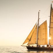 When and If Charter Yacht