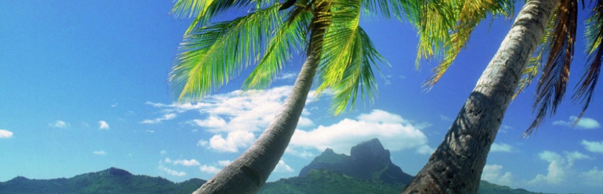 French Polynesia news photo