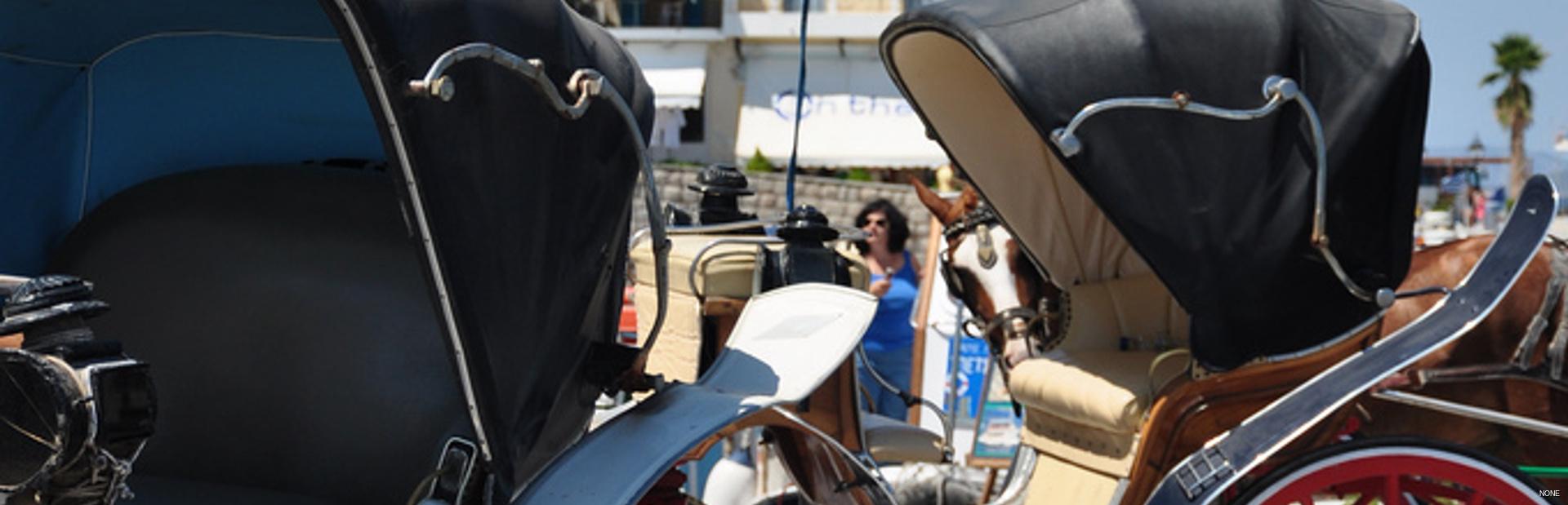 Spetses news photo