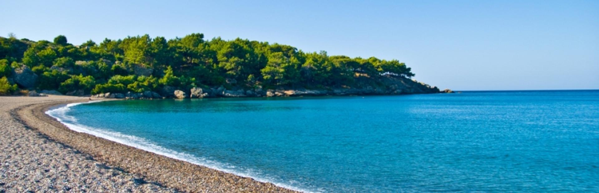 Enjoy the Bustle of Limassol