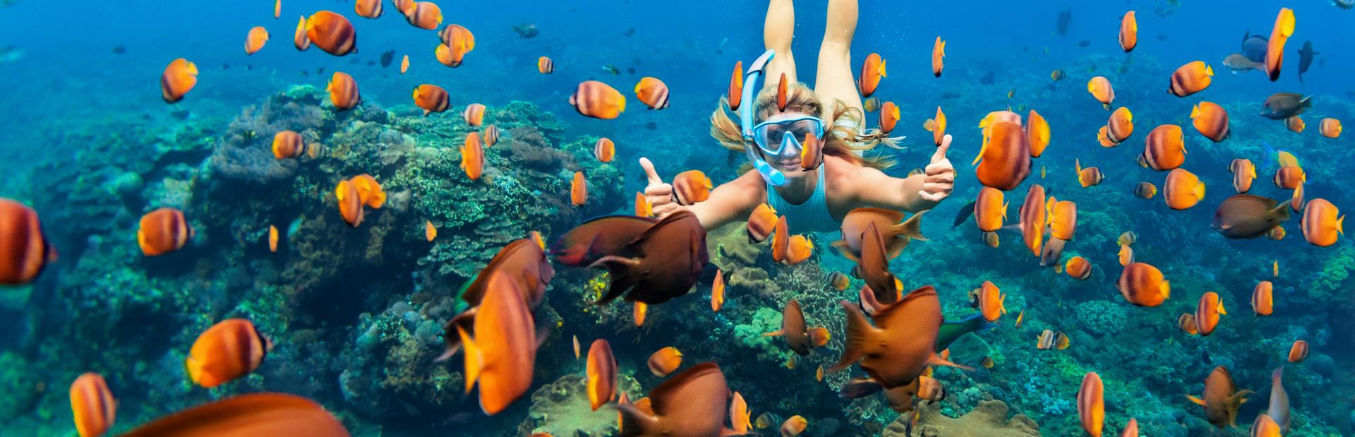 Maldives news photo